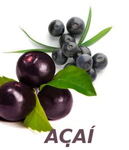 Imagine cu fructe de Acai Berry - blogslabire.ro